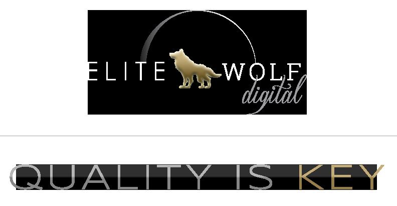 Web Design, SEO, Digital Marketing | Minneapolis | St. Paul | Elite Wolf Digital